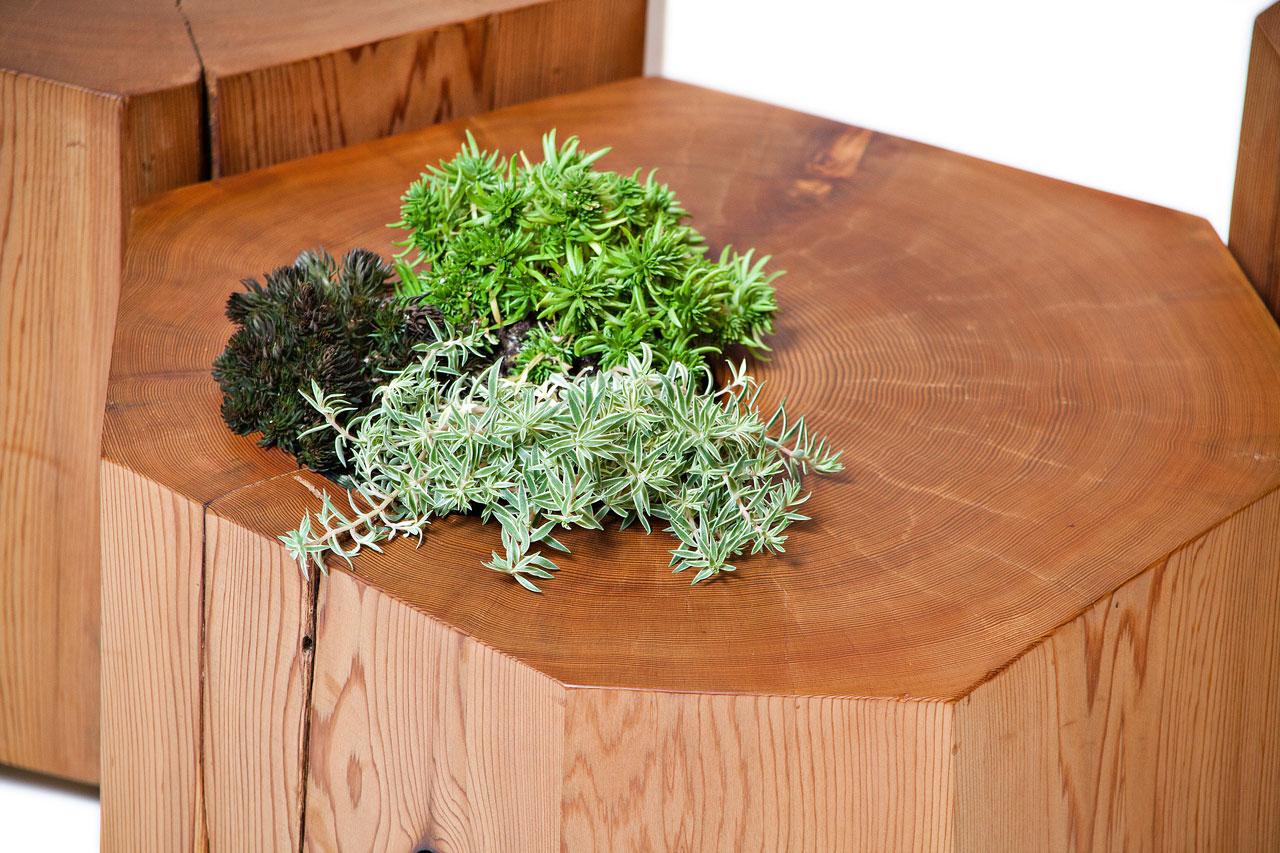 Nurselog Planter Detail